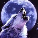 Lone__Wolf