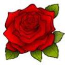 Regina Rose